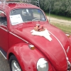 nat (#0416) - 1967 RED Beetle
